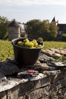 """Online-Wein-Event """"Weinreise Frankreich"""" 14. Mai 2021"""