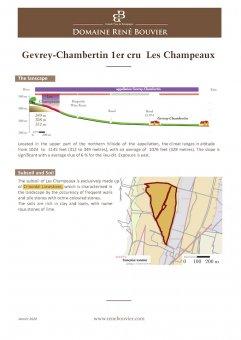 2018er Gevrey-Chambertin 1er Cru Champeaux